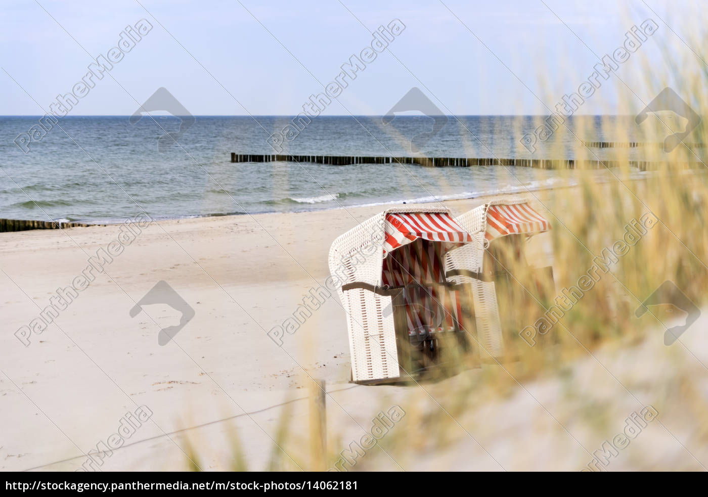 dune, grass, on, baltic, sea, beach - 14062181