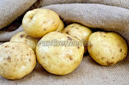 potatoes, yellow, with, burlap - 14064009