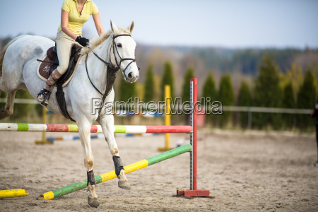 young, woman, show, jumping, with, horse - 14064699