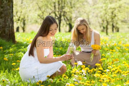 spring, girl - 14068717