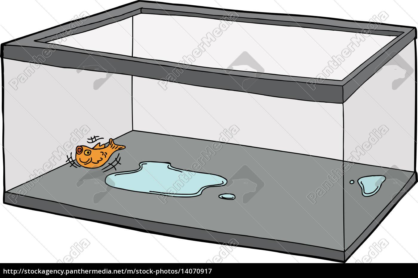 goldfish, flopping, in, empty, tank - 14070917
