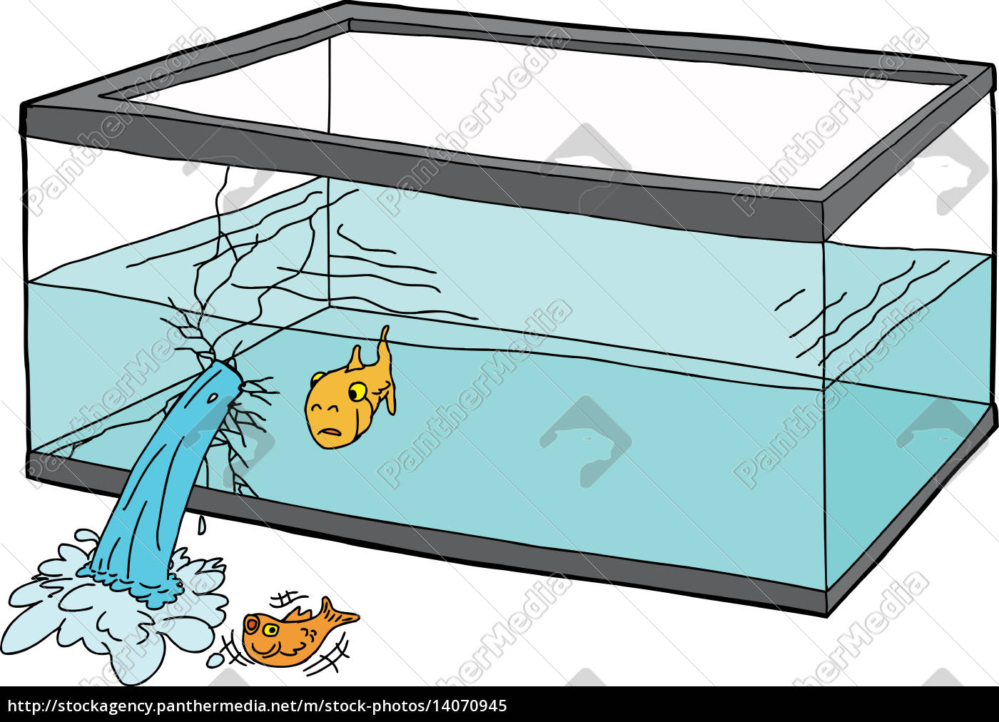 worried, fish, in, broken, tank - 14070945