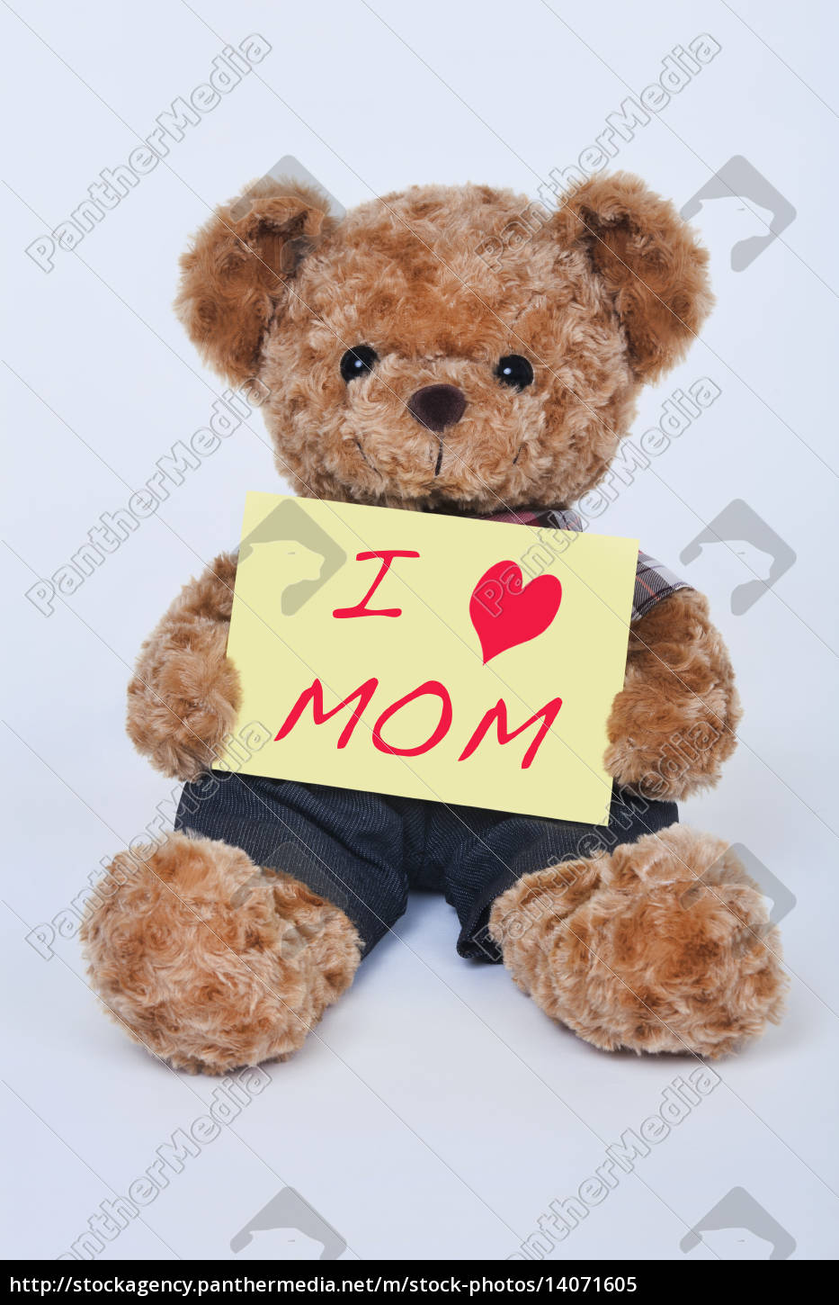 teddy, bear, holding, a, yellow, sign - 14071605