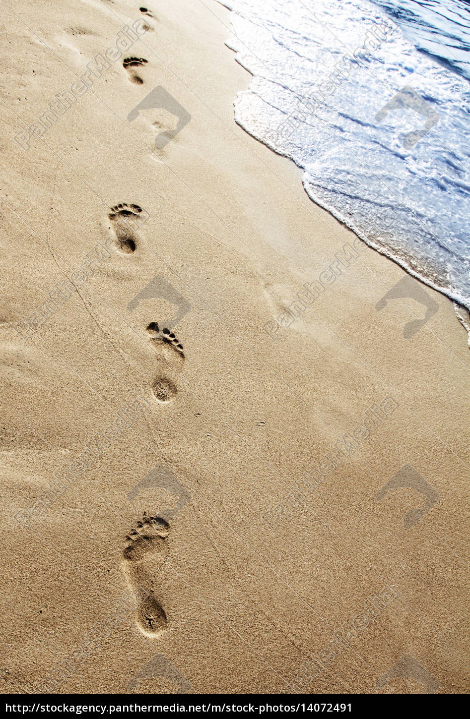 footsteps, in, the, sand - 14072491
