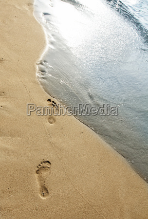 footsteps, in, the, sand - 14072493