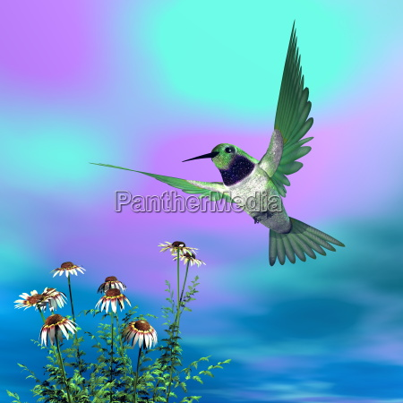 black-chinned, hummingbird, -, 3d, render - 14073787