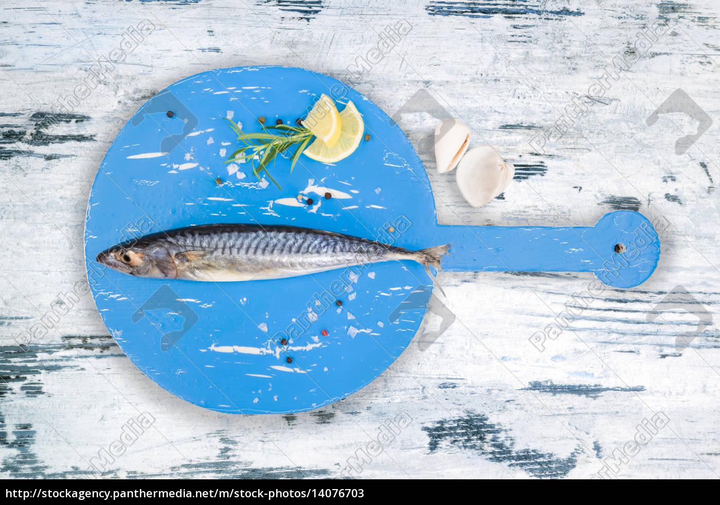 blue, food, aliment, animal, water, mediterranean - 14076703