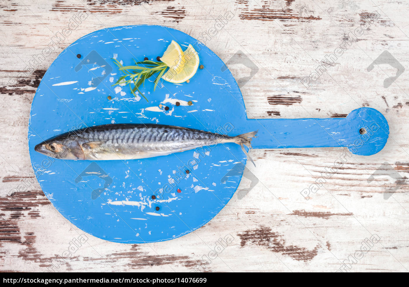 delicious, fresh, mackerel. - 14076699