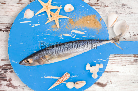 delicious, fresh, mackerel, fish. - 14076659
