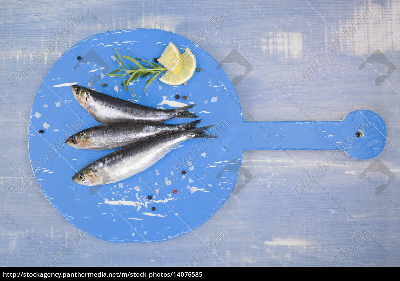 fresh, anchovy, fish, on, blue, wooden - 14076585