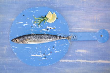 mackerel, on, blue, wood. - 14076573