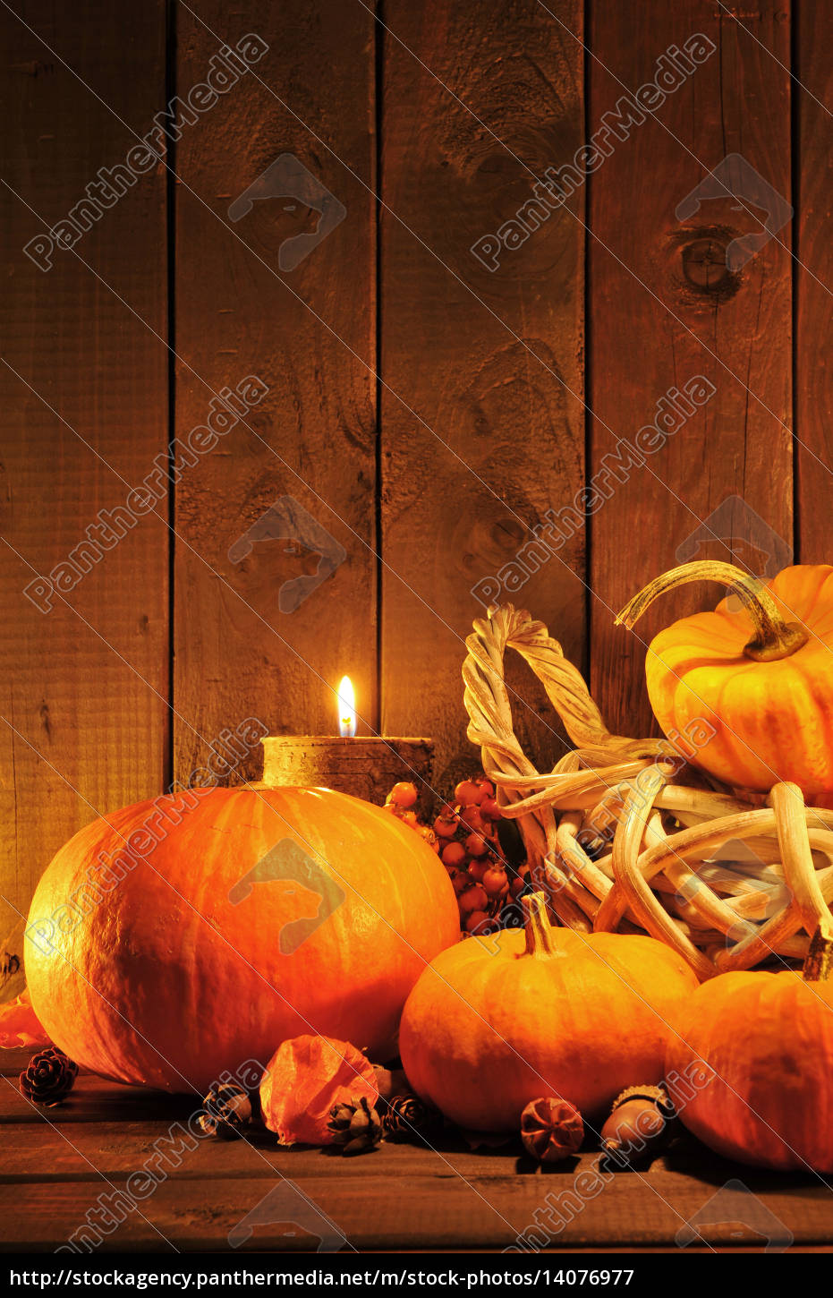 pumpkins, in, the, candlelight - 14076977