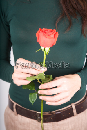 green, sweater, with, red, rose - 14077249