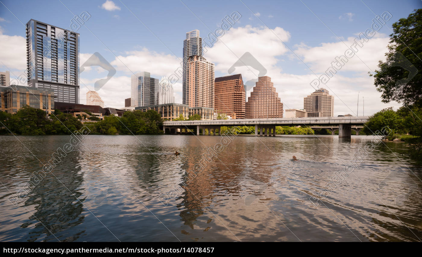 dogs, swimming, playing, colorado, river, downtown - 14078457