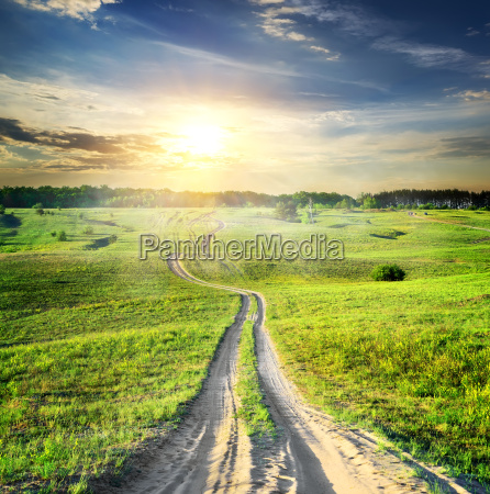 road, through, spring, field - 14078057