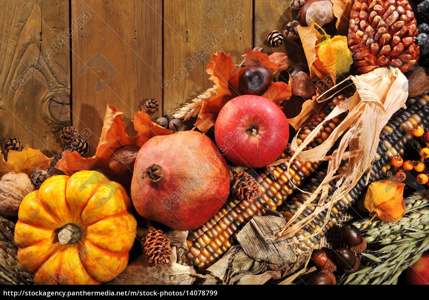 thanksgiving - 14078799