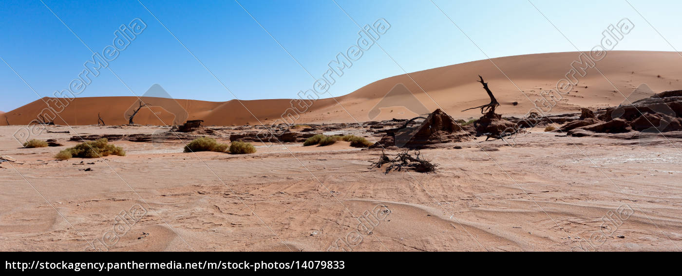 beautiful, landscape, of, hidden, vlei, in - 14079833