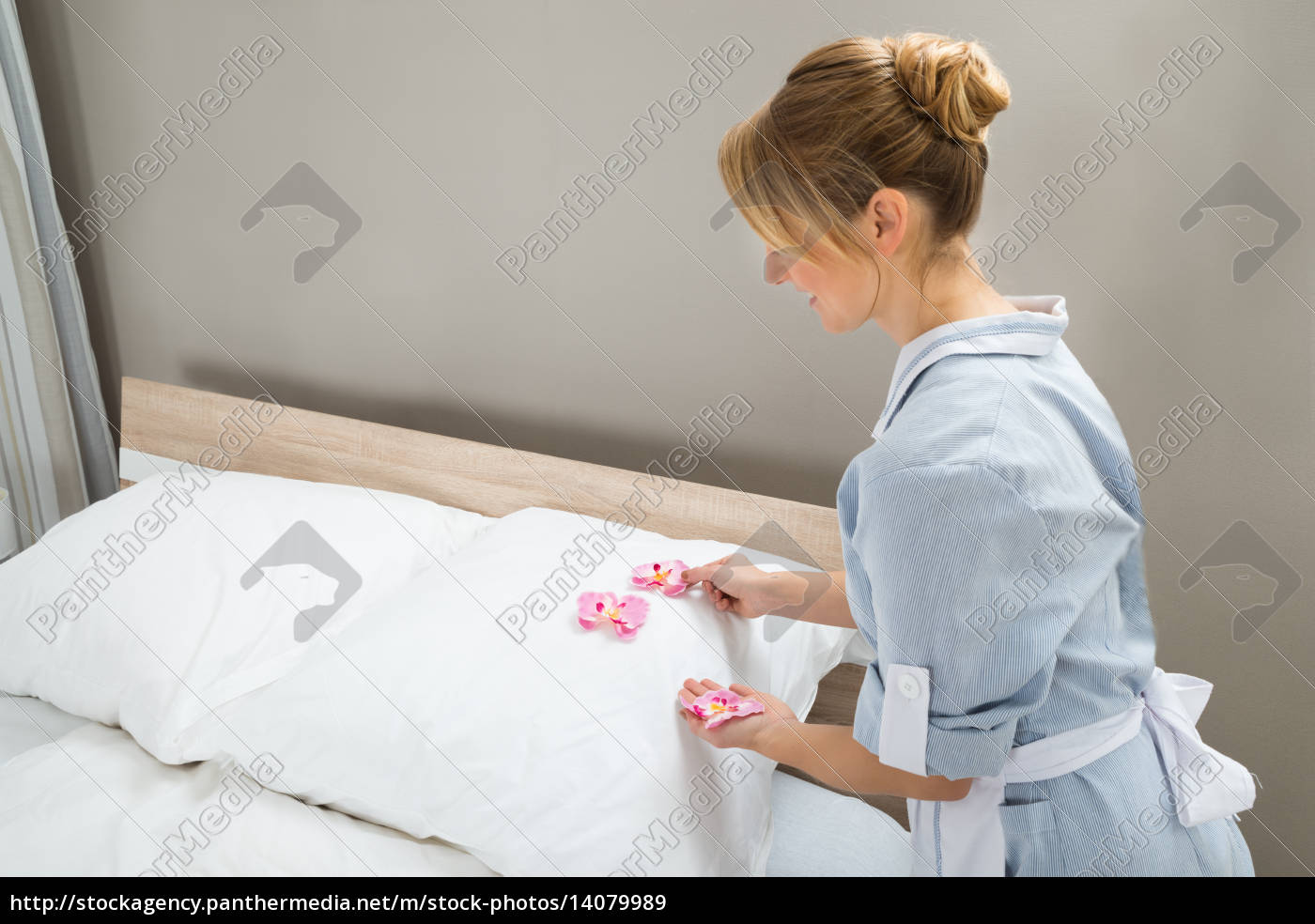 housekeeper, decorating, pillows, with, petals - 14079989