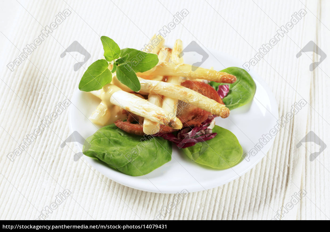 white, asparagus, with, crispy, bread - 14079431