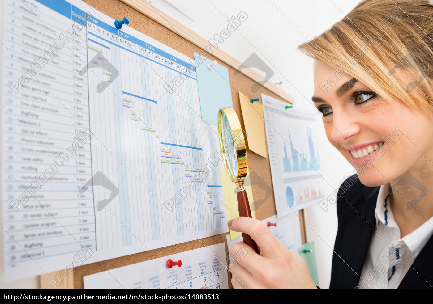 businesswoman, examining, gantt, chart, with, magnifying - 14083513
