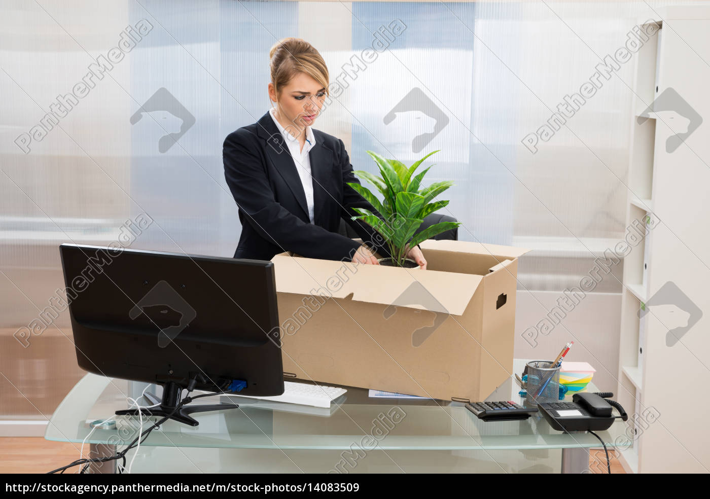 businesswoman, packing, belongings, in, box - 14083509