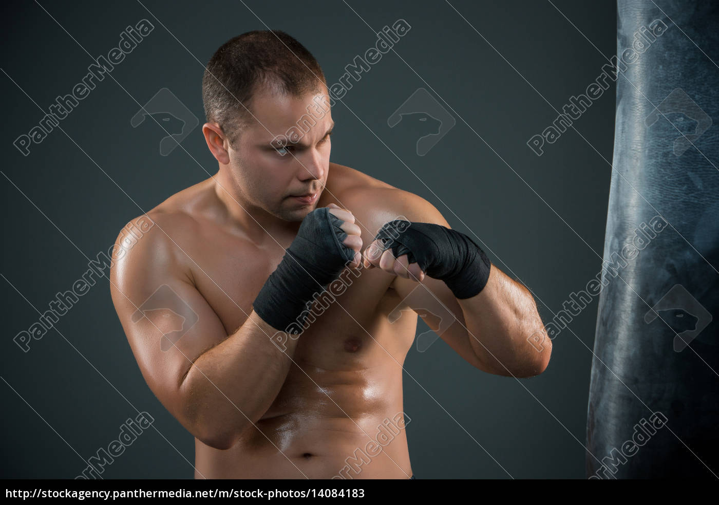 young, boxer, boxing - 14084183