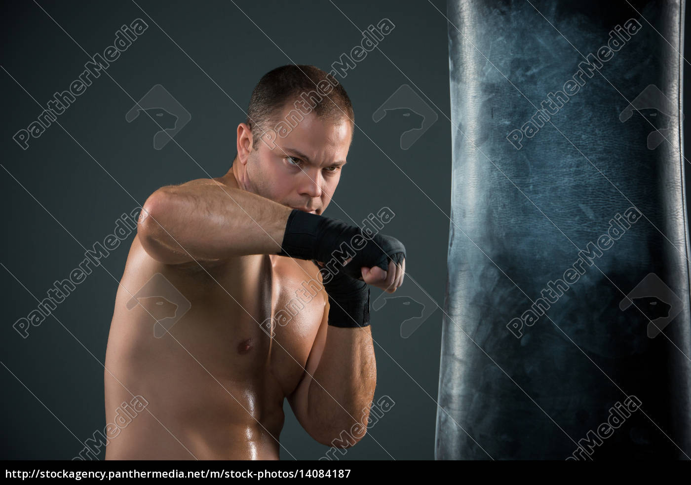 young, boxer, boxing - 14084187