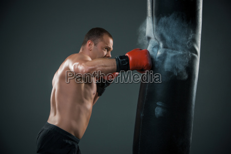 young, boxer, fighter - 14084163