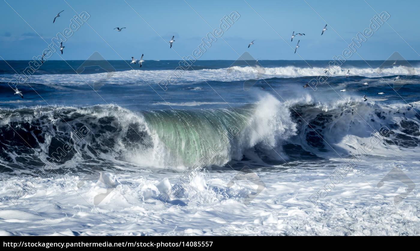 big, wave - 14085557