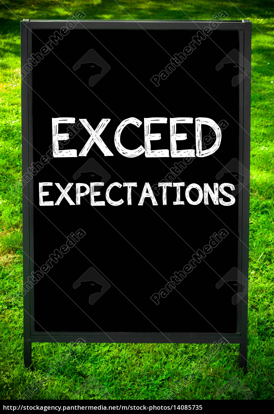exceed, expectations - 14085735