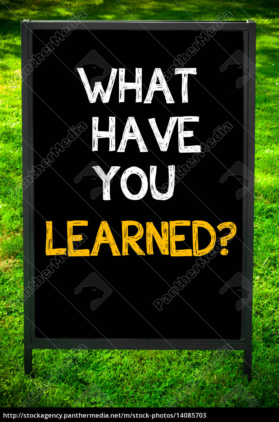 what, have, you, learned? - 14085703