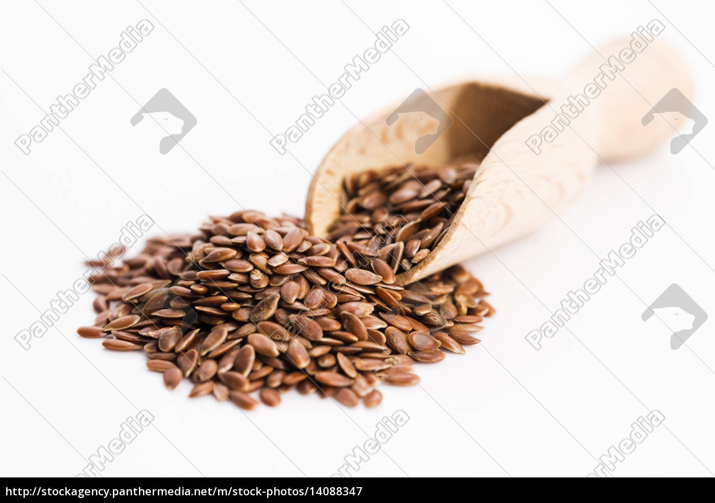 flax, seeds, , linseed, , lin, seeds, close-up - 14088347
