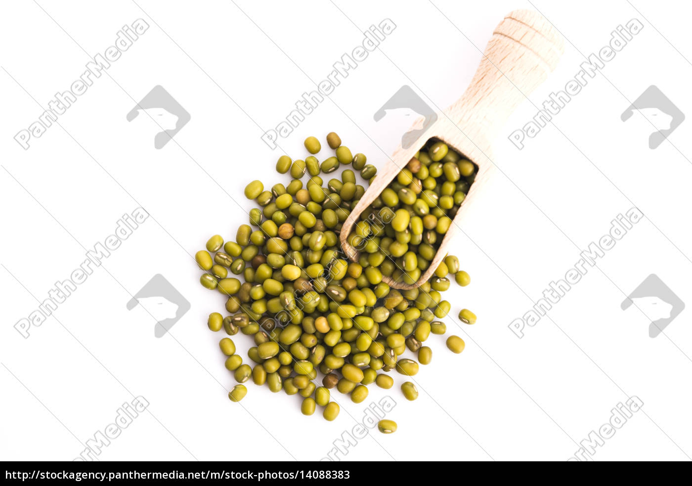 pile, of, mung, beans, isolated, on - 14088383