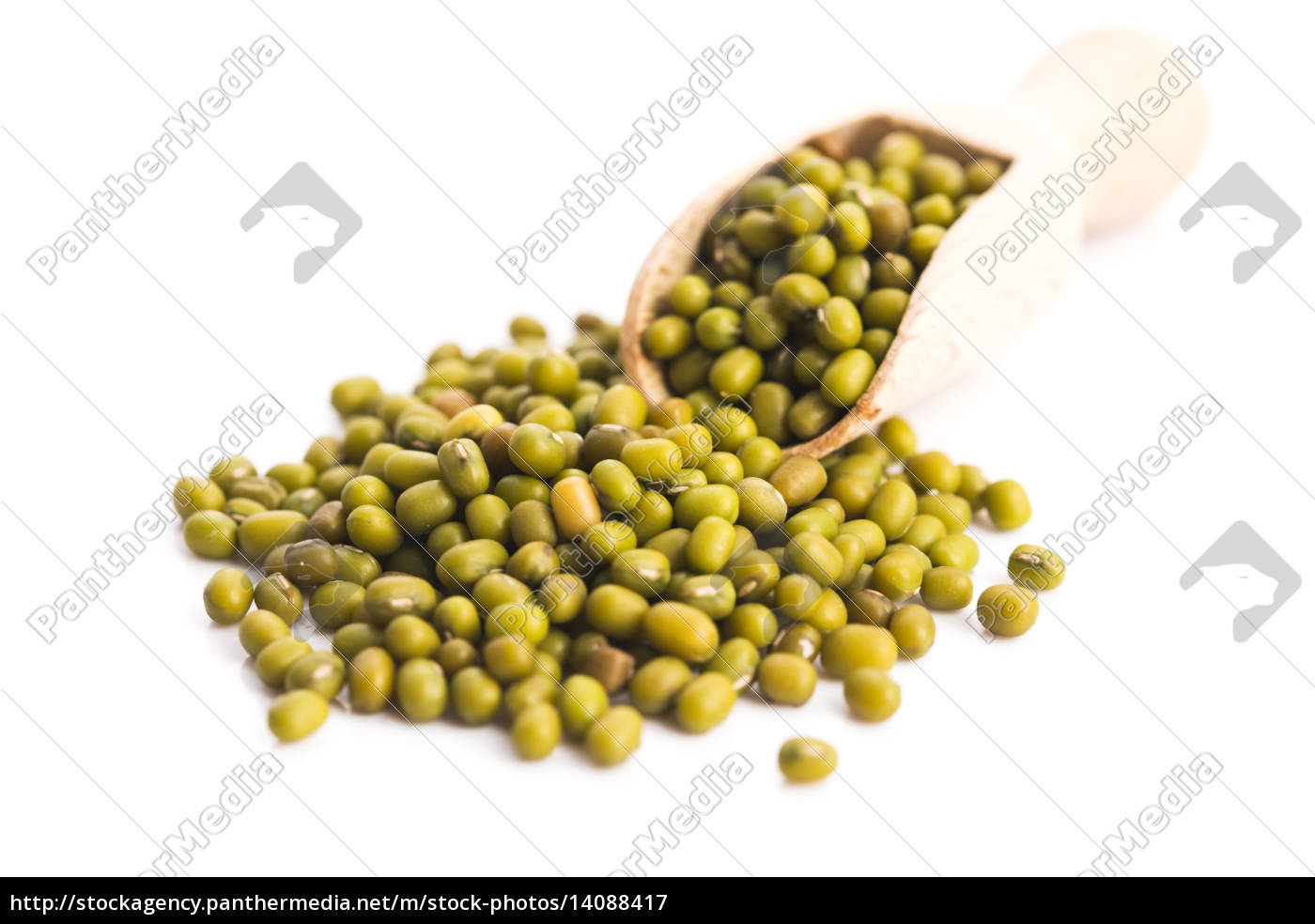pile, of, mung, beans, isolated, on - 14088417