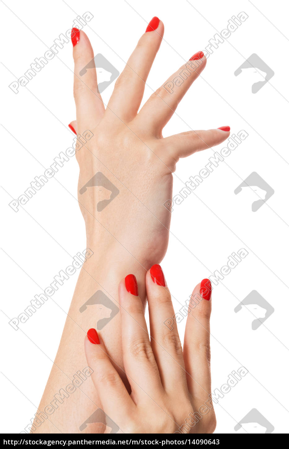 hands, with, beautiful, neat, fingers, and - 14090643