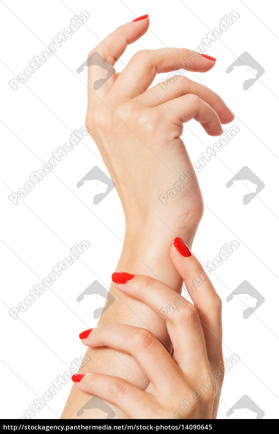 hands, with, beautiful, neat, fingers, and - 14090645