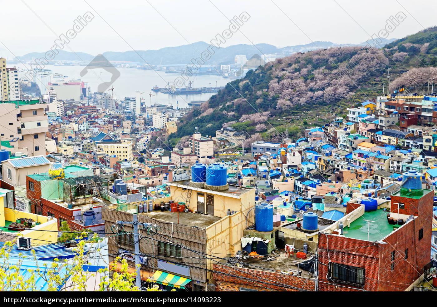 gamcheon, culture, village, in, south, korea. - 14093223