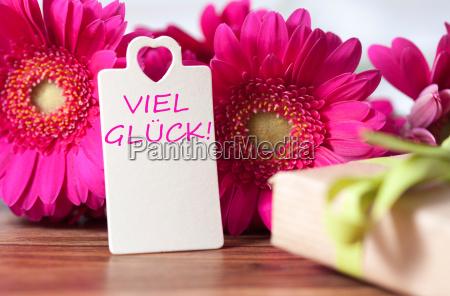 good, luck - 14098329