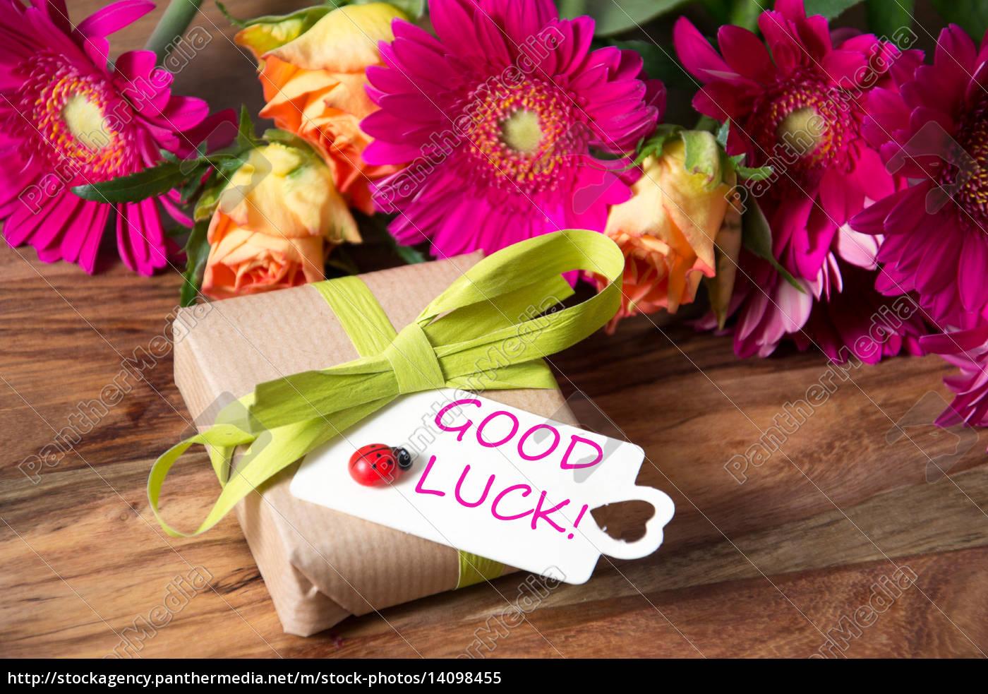 good, luck - 14098455