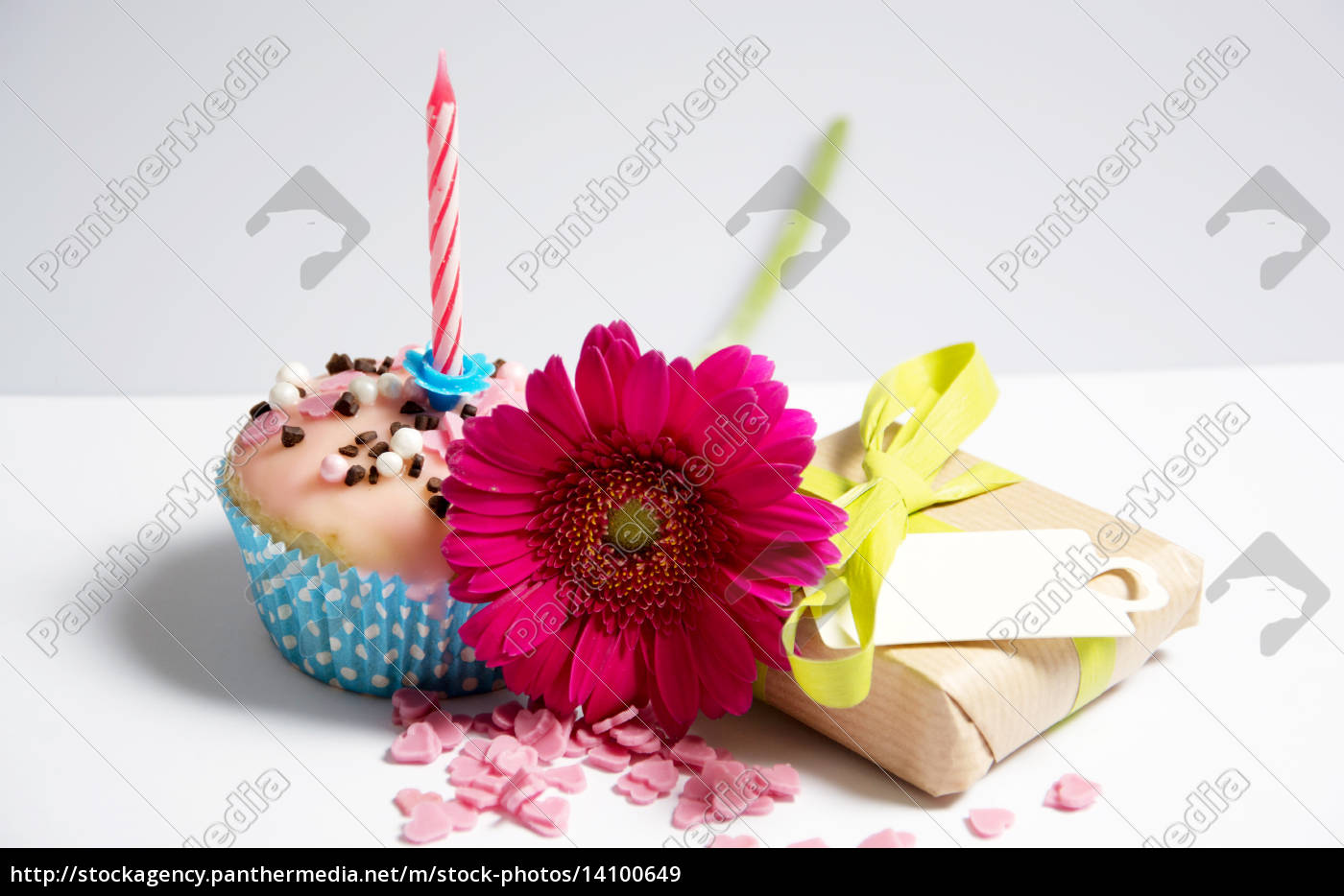 birthday - 14100649