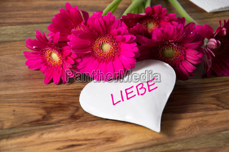 love - 14100683