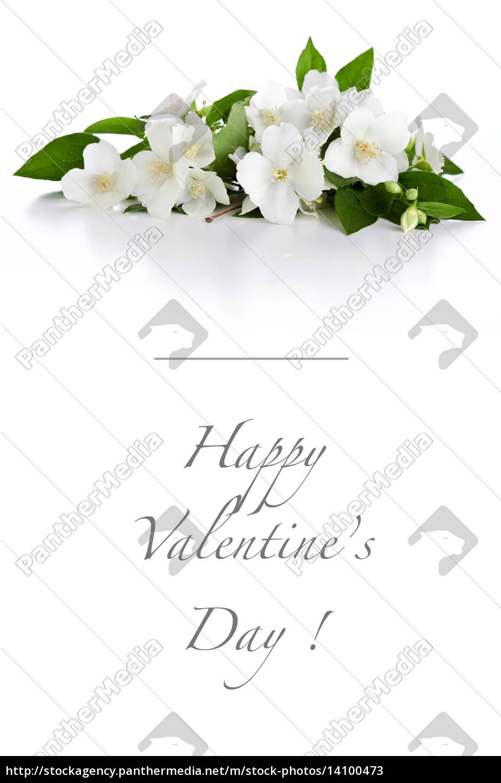 sweet, valentine's, day, card - 14100473