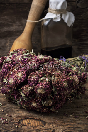 medicinal, herb - 14102355