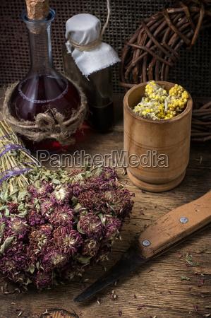 medicinal, herb - 14102363