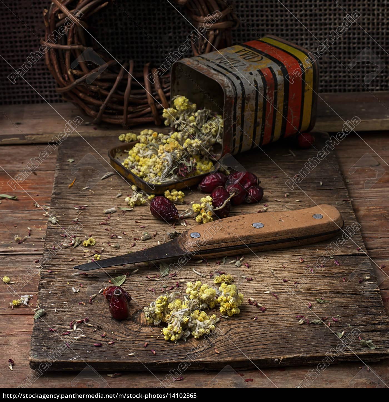 medicinal, herb - 14102365