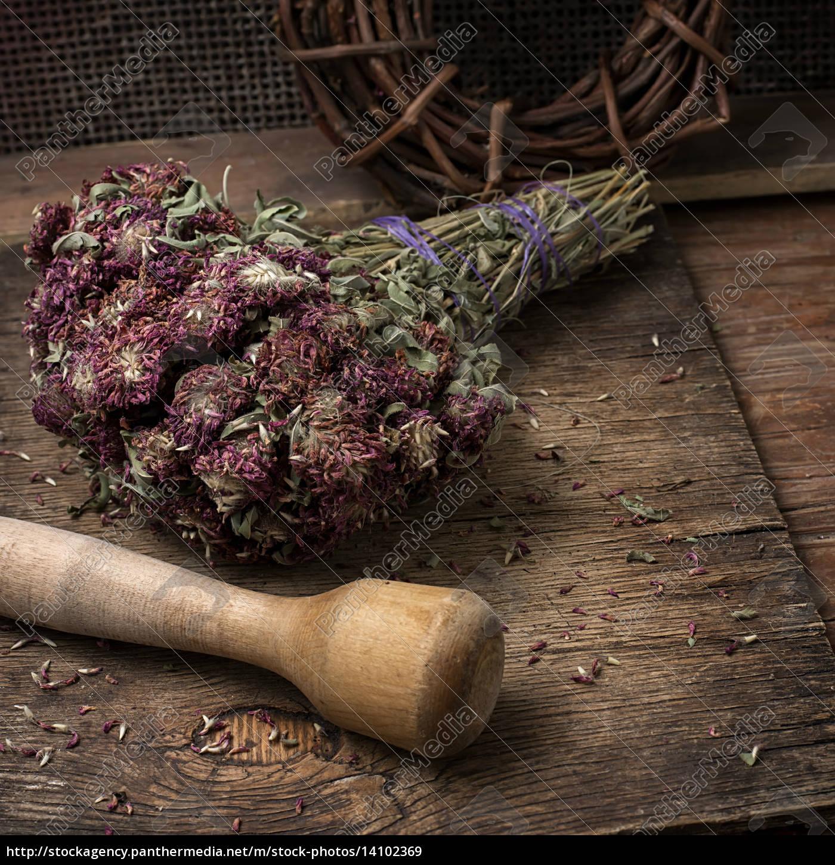 medicinal, herb - 14102369