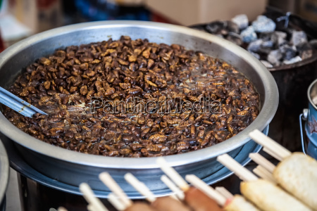 fried beetles or insects
