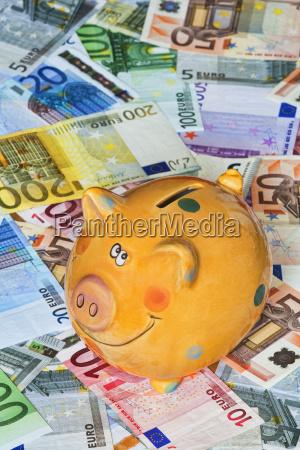 euro bank notes with a piggy
