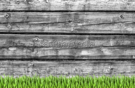 wooden wall and green grass background