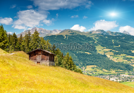 alpine landscape during the summer season